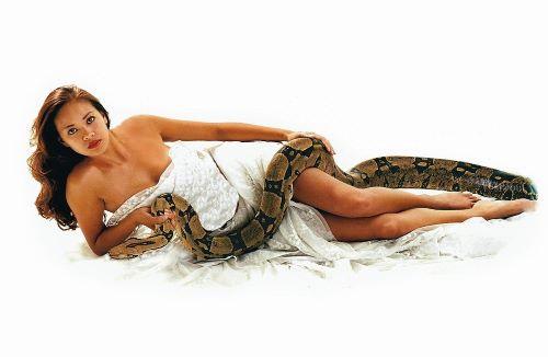 sanovnik zmija