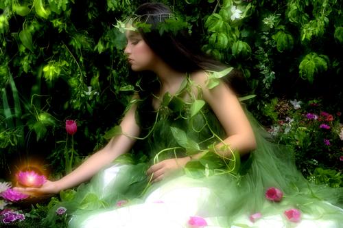 sanovnik sanjati cvece